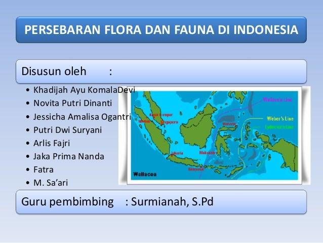 PERSEBARAN FLORA DAN FAUNA DI INDONESIADisusun oleh         :•   Khadijah Ayu KomalaDevi•   Novita Putri Dinanti•   Jessic...