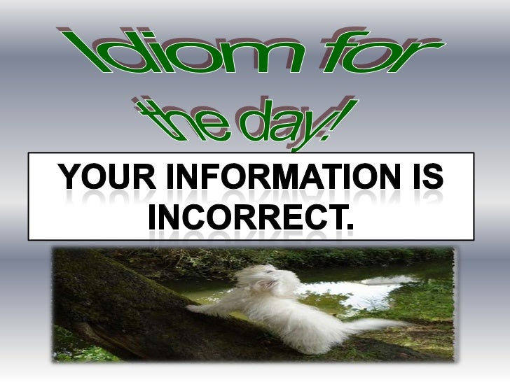 Idiom for <br />the day!<br />Your information IS<br />INCORRECT.<br />You're barking up the wrong tree<br />