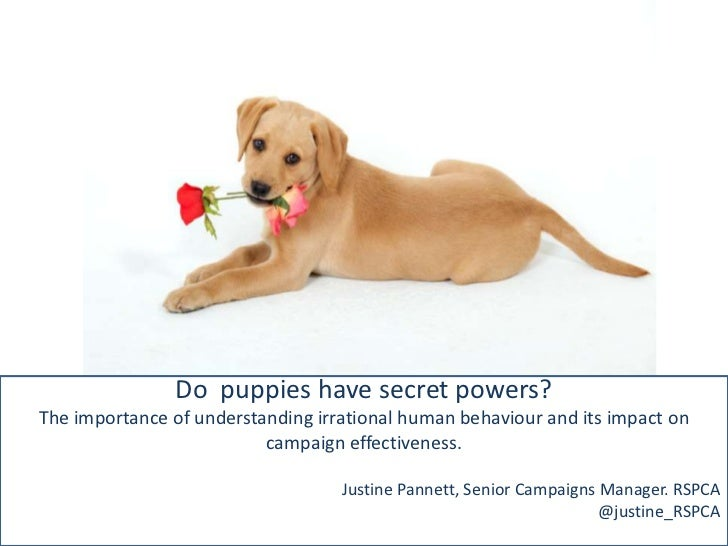 Do puppies have secret powers?The importance of understanding irrational human behaviour and its impact on                ...