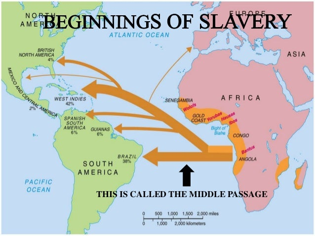 the reasons for the introduction of slavery to the american colonies 4-25 summarize the introduction and establishment of slavery in the american colonies, including the role of the slave  for african american history .