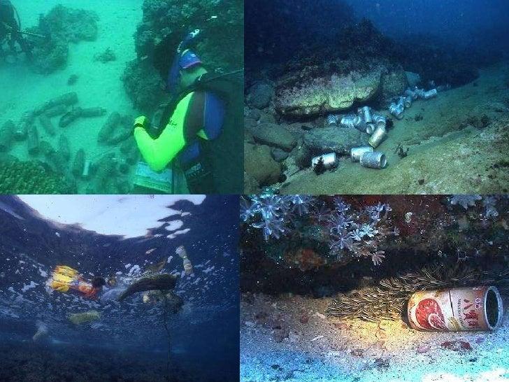 壁纸 海底 海底世界 海洋馆 水族馆 728_546