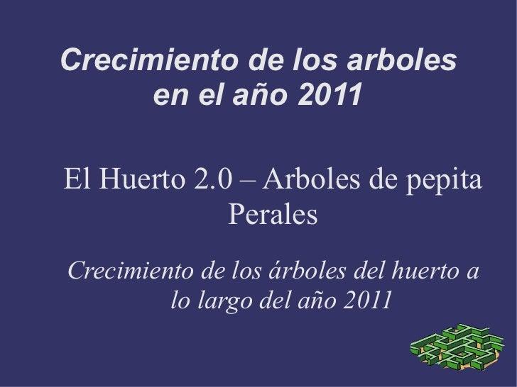 Crecimiento de los arboles      en el año 2011El Huerto 2.0 – Arboles de pepita             PeralesCrecimiento de los árbo...