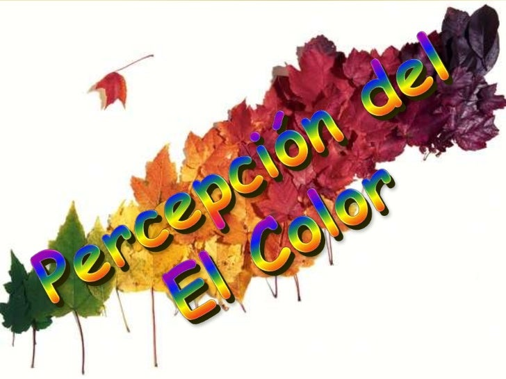 Percepcion del Color