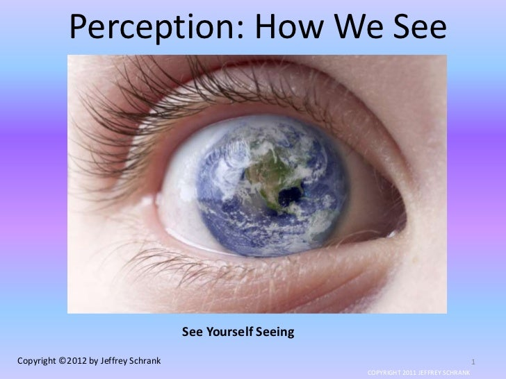 Perception: How We See                                     See Yourself SeeingCopyright ©2012 by Jeffrey Schrank          ...