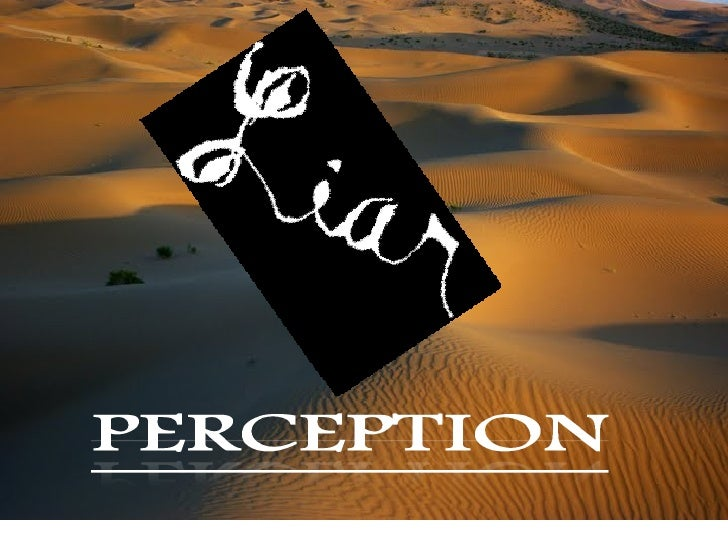 Perception  Amanpreet Makkar