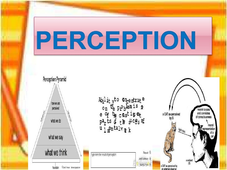 Perception  psychology2010-b1