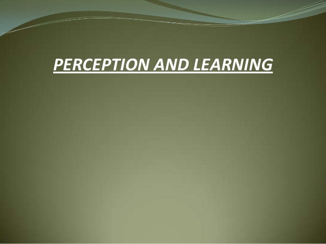 PERCEPTION AND LEARNING