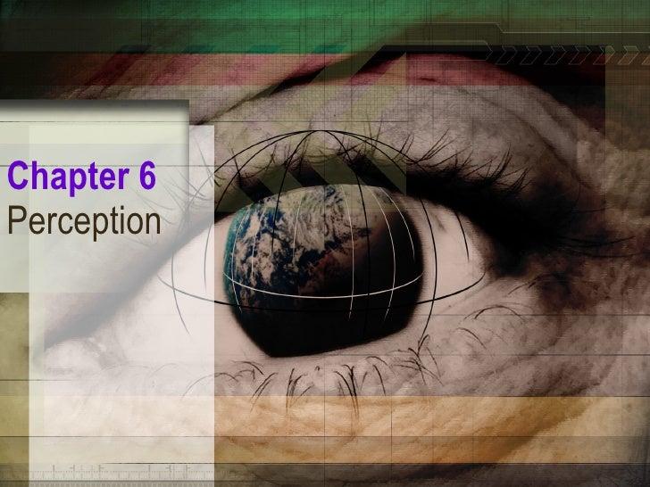 Perception Chp6