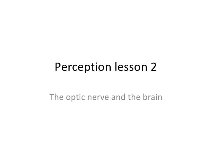 Perception lesson 2The optic nerve and the brain