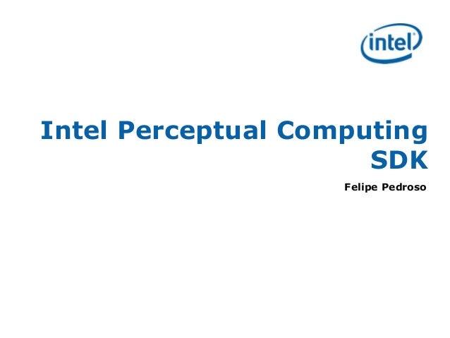 Intel Perceptual Computing SDK Felipe Pedroso