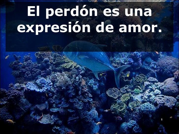 El perdón es una expresión de amor.