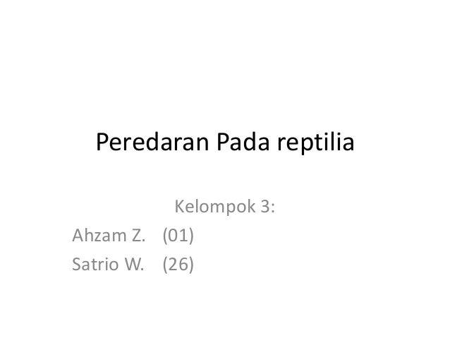 Peredaran Pada reptilia Kelompok 3: Ahzam Z. (01) Satrio W. (26)
