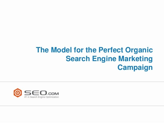 The Model for the Perfect Organic Search Engine Marketing Campaign