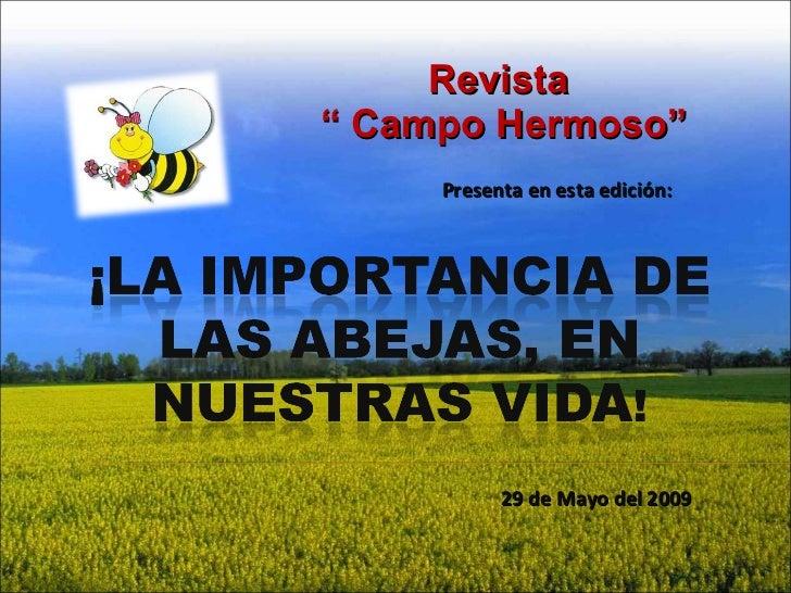 """Revista  """"  Campo Hermoso"""" Presenta en esta edición:  29 de Mayo del 2009"""