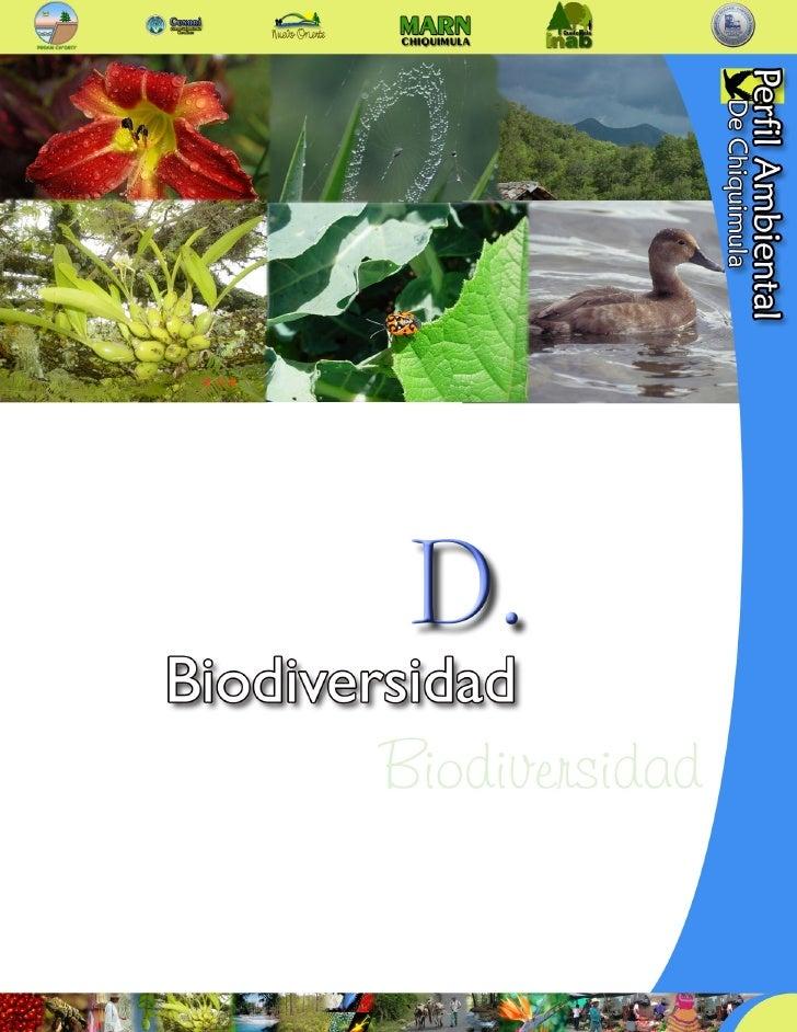 Perfil ambiental de chquimula