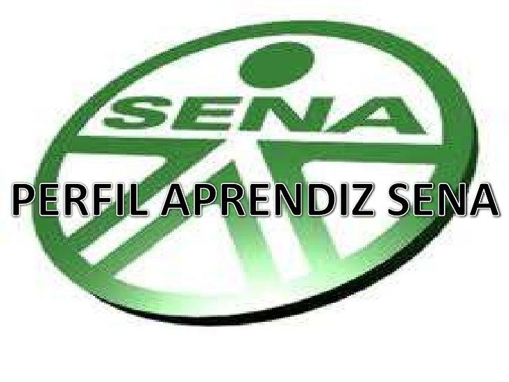 PERFIL APRENDIZ SENA<br />