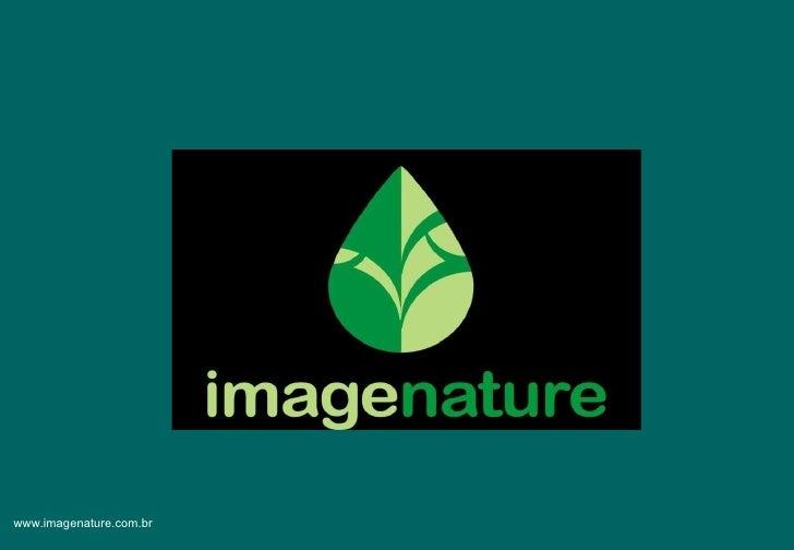 Perfil Image Nature Comunicação e Sustentabilidade - Versão completa