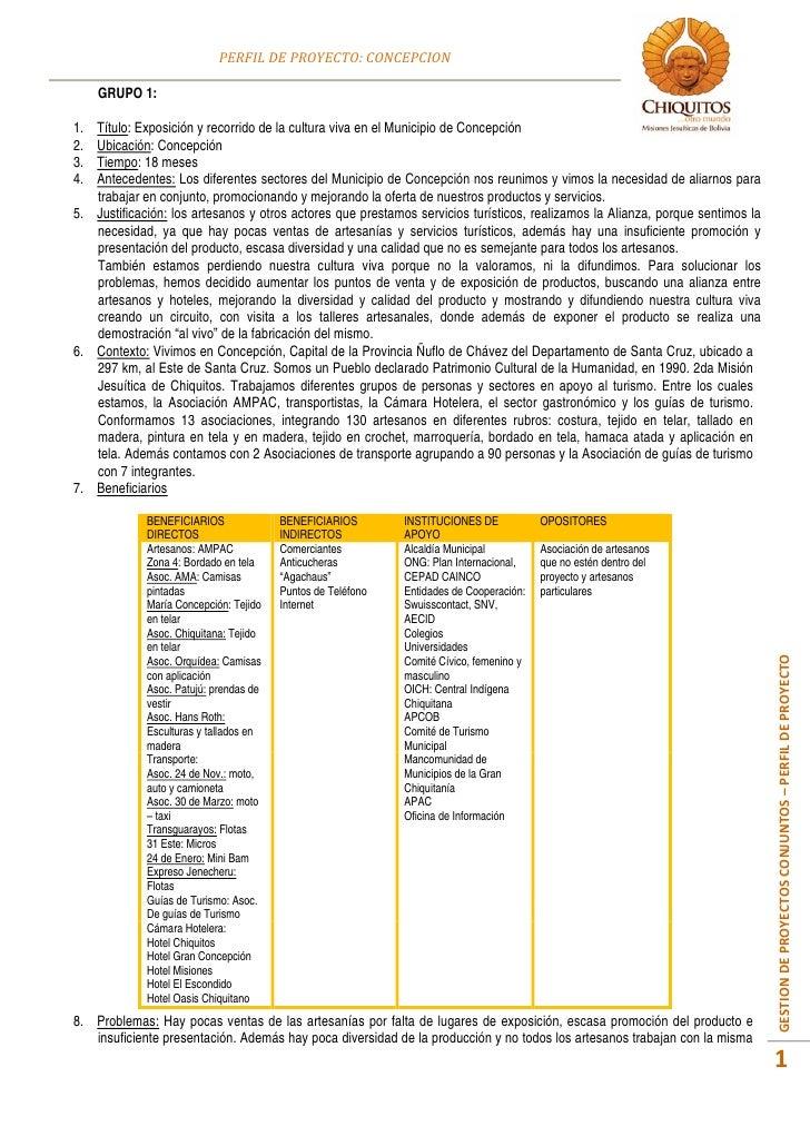 Perfil proyecto concepcion (C2)