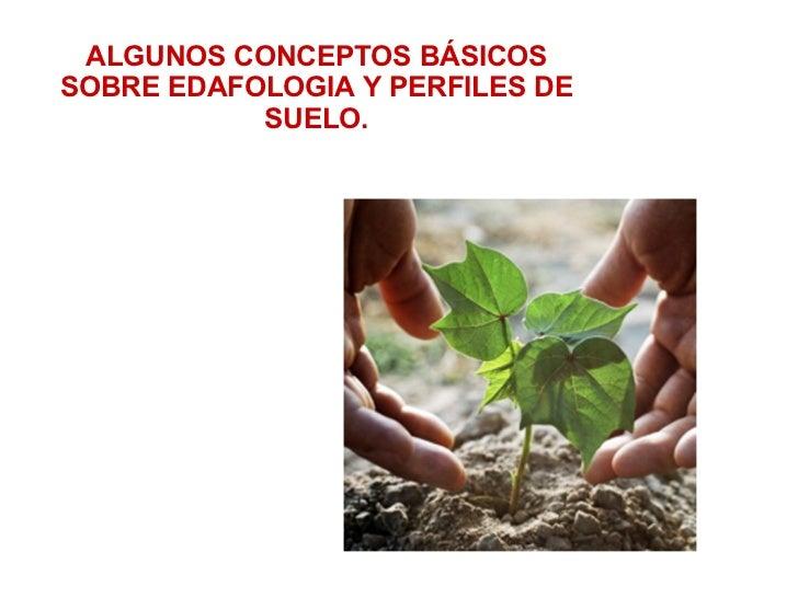 ALGUNOS CONCEPTOS BÁSICOSSOBRE EDAFOLOGIA Y PERFILES DE           SUELO.