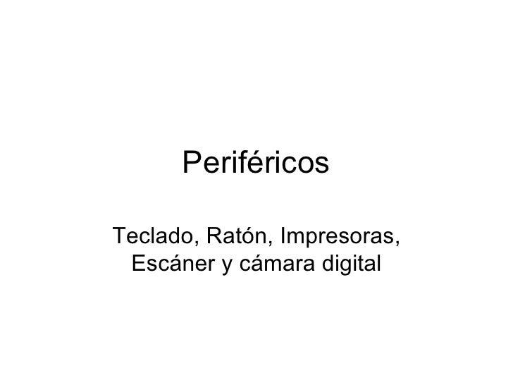 Montse Tallada_Perifericos