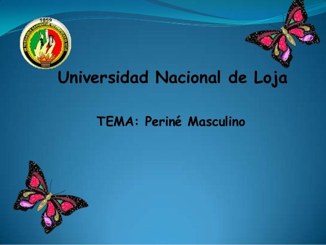 Universidad Nacional de Loja TEMA: Periné Masculino