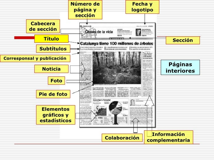 Periodico datos tecnicos for Elementos del periodico mural