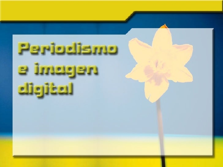 Periodismo e Imagen Digital