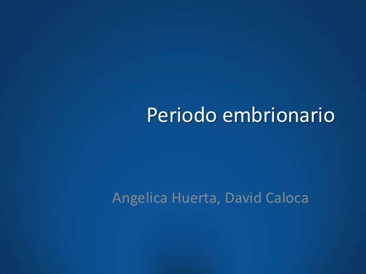 Periodo embrionarioAngelica Huerta, David Caloca