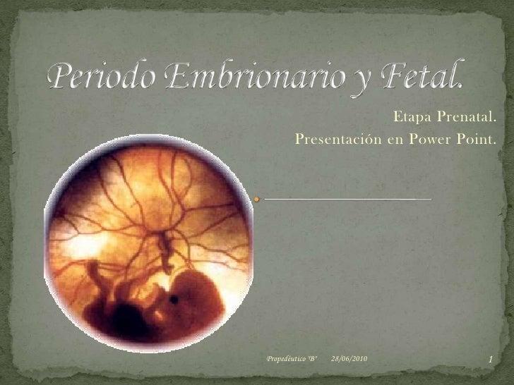 Periodo Embrionario y Fetal.<br />Etapa Prenatal.<br />Presentación en Power Point.<br />03/06/2010<br />1<br />Propedéuti...