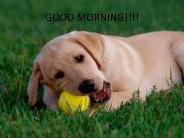 GOOD MORNING!!!!