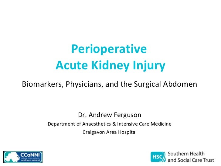 Perioperative  Acute Kidney Injury Biomarkers, Physicians, and the Surgical Abdomen Dr. Andrew Ferguson Department of Anae...