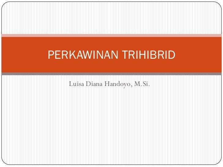Perkawinan trihibrid