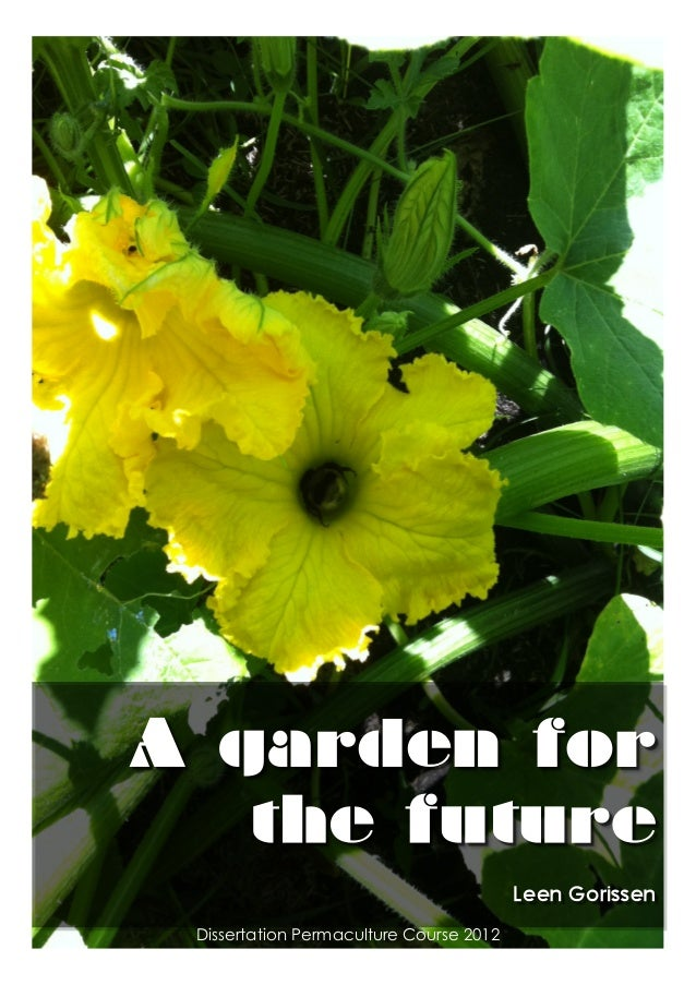 Permaculture dissertation 'A garden for the future'