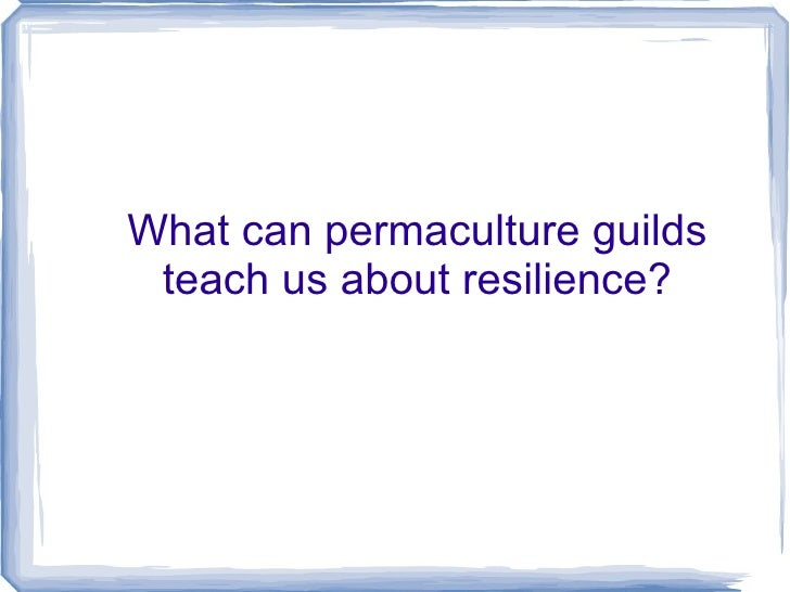 Permaculture Guilds and Resilience