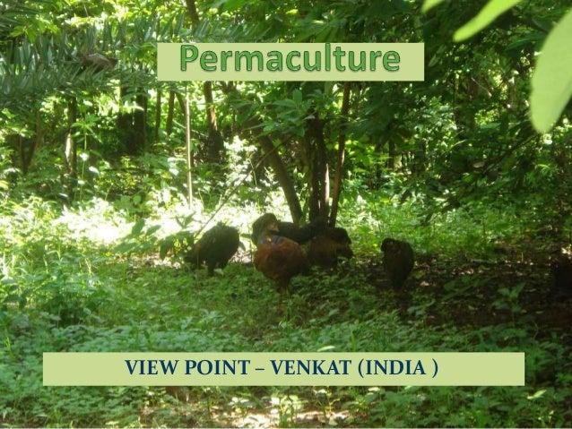 Permaculture view venkat
