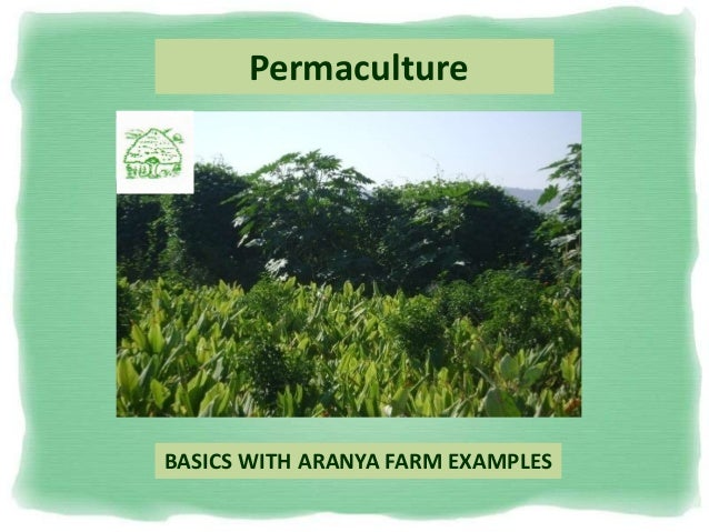 Permaculture BASICS WITH ARANYA FARM EXAMPLES