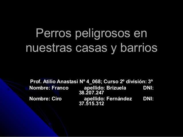 Perros peligrosos enPerros peligrosos en nuestras casas y barriosnuestras casas y barrios Prof. Atilio Anastasi Nº 4_068; ...