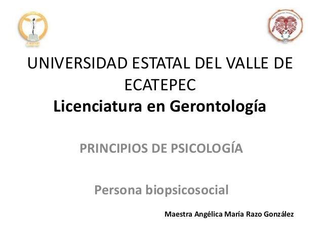 UNIVERSIDAD ESTATAL DEL VALLE DE ECATEPEC Licenciatura en Gerontología PRINCIPIOS DE PSICOLOGÍA Persona biopsicosocial Mae...
