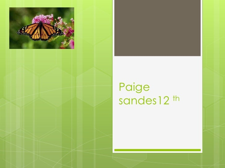 Personal introduction  paige sanders