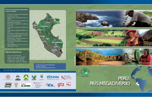 El Perú es uno de los diez países megadi-    versos en el mundo.    • 84 de las 117 zonas de vida del planeta se      encu...