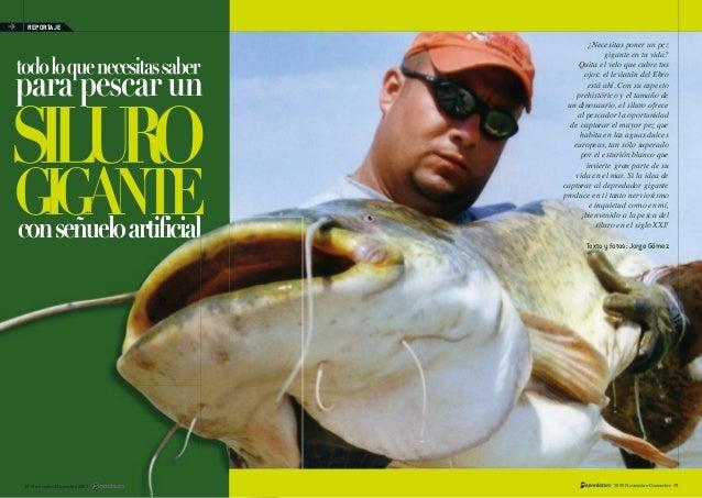 Pesca del-siluro-gigante
