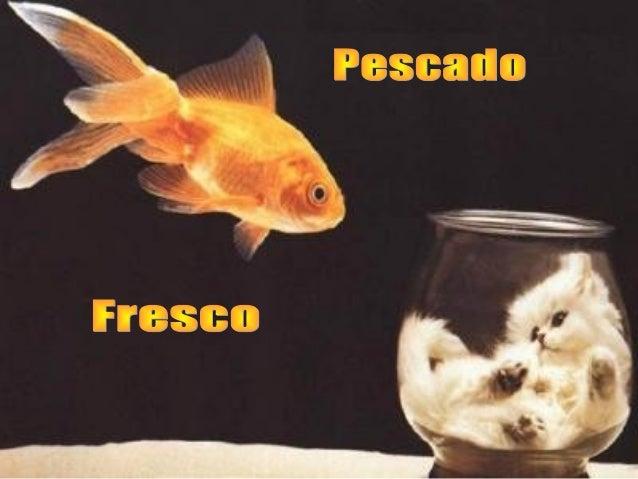 Los japoneses siempre han gustado del pescado fresco. Pero las aguas cercanas a Japón no han tenido muchos peces por décad...