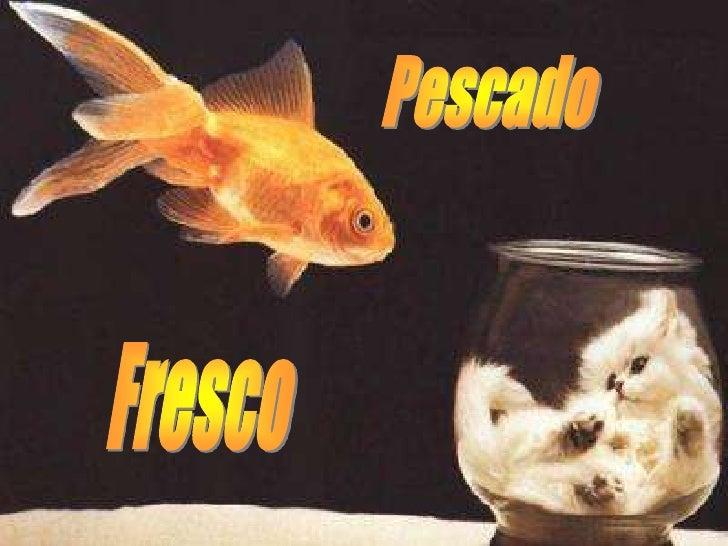 Pescado<br />Fresco<br />
