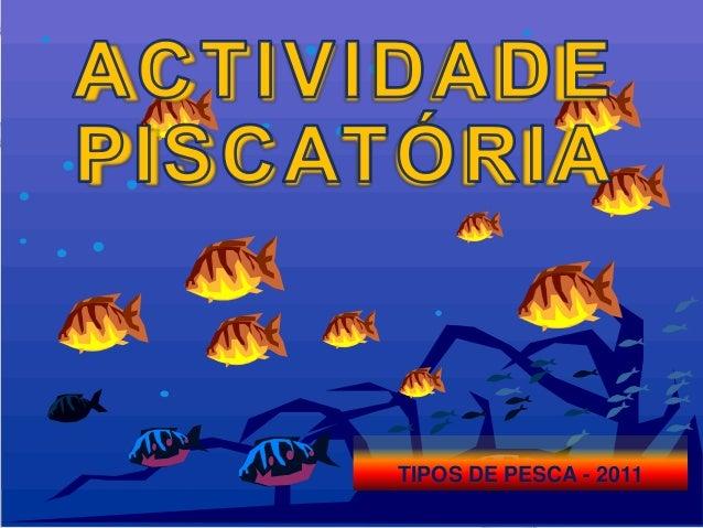 TIPOS DE PESCA - 2011