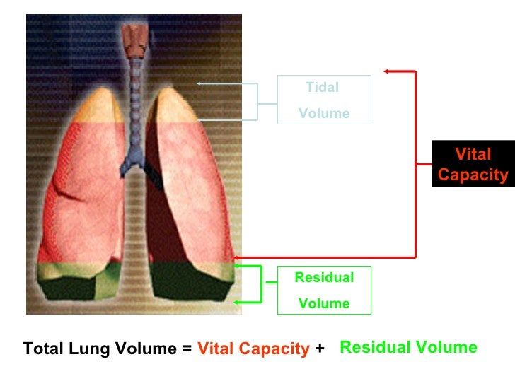 How to Measure Residual Lung Volume
