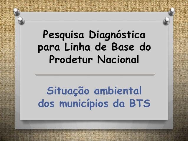 Pesquisa Diagnóstica para Linha de Base do Prodetur Nacional Situação ambiental dos municípios da BTS