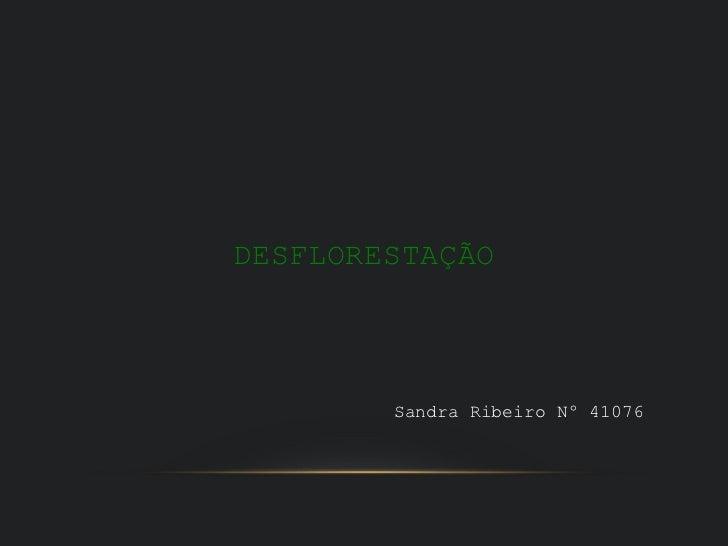 DESFLORESTAÇÃO        Sandra Ribeiro Nº 41076