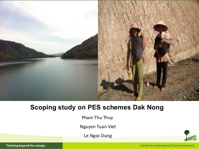 Scoping study on PES schemes Dak Nong