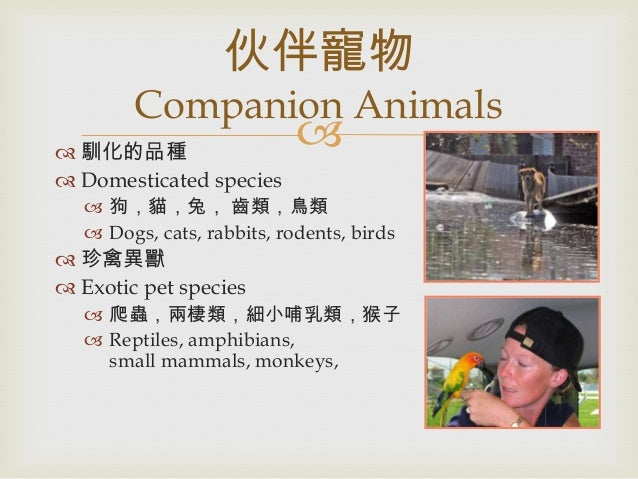 animal behavior final notes Notes and study guide for chapter on animal behavior, which includes presentation slides and a description of the main concepts of animal behavior.