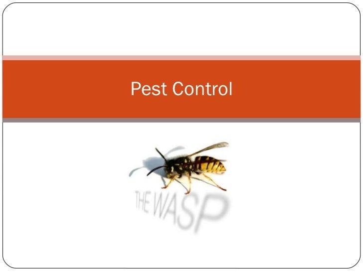 http://Pestcontrol.inlasvegaslocalareas.com
